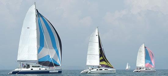 Oasis Catamaran