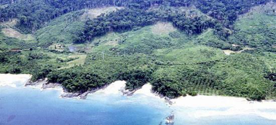 The West Coast of Palawan