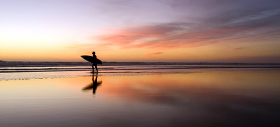 Local Surfer, Auckland