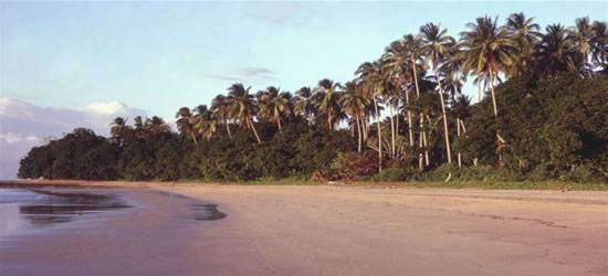 Playa de Patak