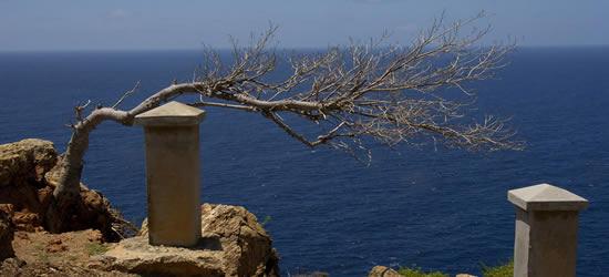 Imágenes de Antigua