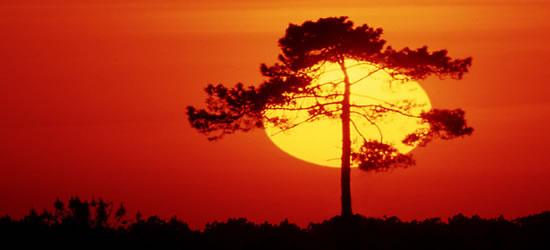 Puesta de sol Algarve