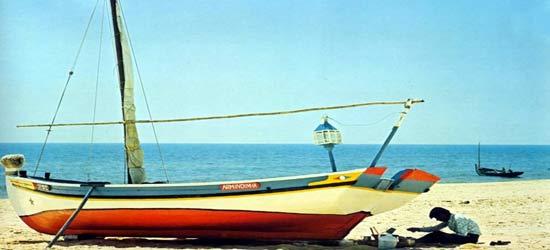 Lanteen Vela, Barcos de pesca