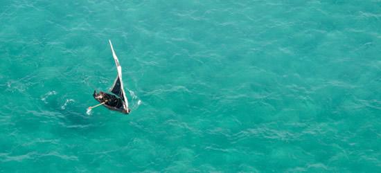 Vista aérea de un Dhow