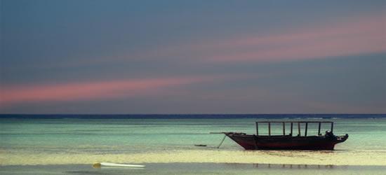 Acuarelas de Zanzibar