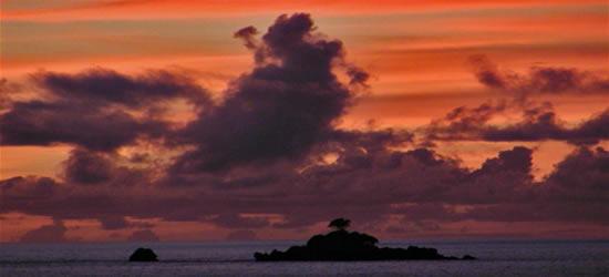 Acuarelas de Seychelles