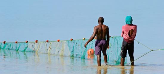 Reti Casting, Mozambico