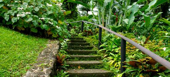 Jardín Botánico, San Vicente